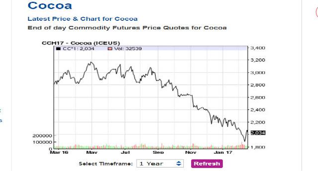 Investire in cacao