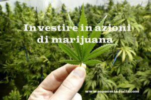Le Migliori Azioni di Marijuana da tenere sotto occhio