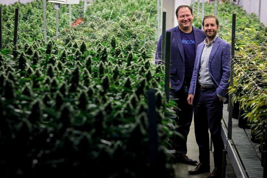 azioni di marijuana migliori su cui investire