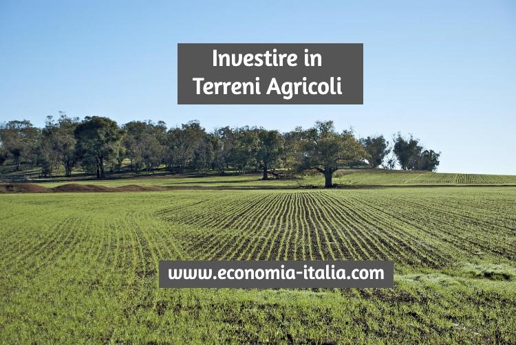 Investire in Terreni Agricoli Guida e Prospettive di Guadagni nel Mercato Fondiario