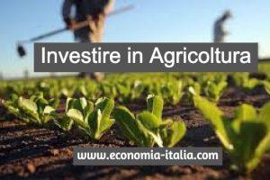 Investire in Agricoltura: come farlo e su quali prodotti?
