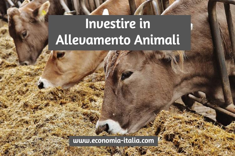 Investire in Allevamento di Animali: Come farlo e quali scegliere