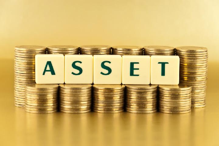 Asset: Cos'é una Risorsa Economica