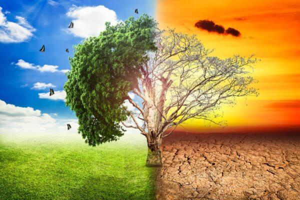 Migliori Azioni sul Cambiamento Climatico da Comprare ora