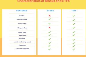 ETF o Azioni ? Cosa Comprare per fare il migliore investimento
