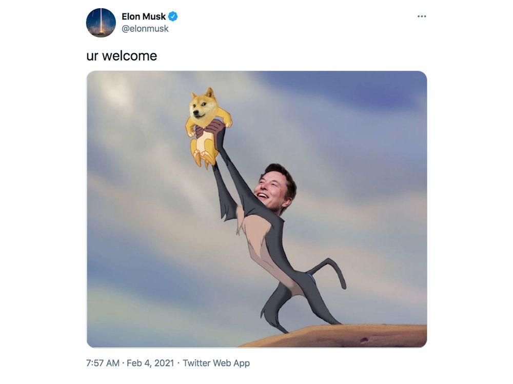 Come Elon musk Manipola il Mercato delle Criptovalute con i suoi Tweet